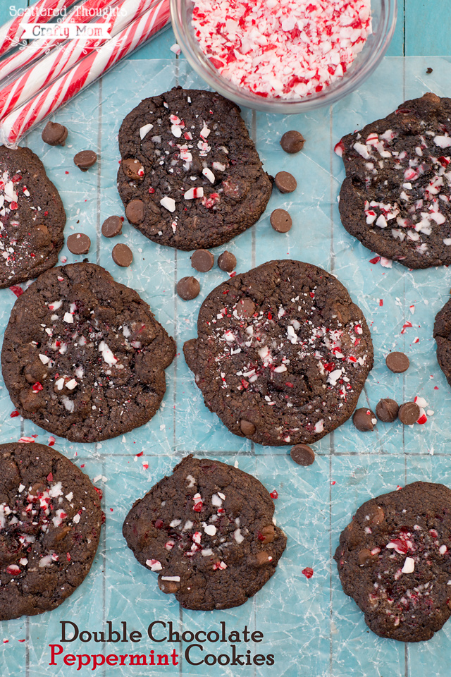 Double Chocolate Peppermint Cookies | Scattered Thoughts of a Crafty ...