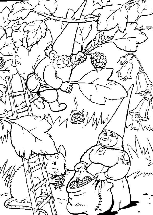Dibujos animados para colorear: David el Gnomo para colorear