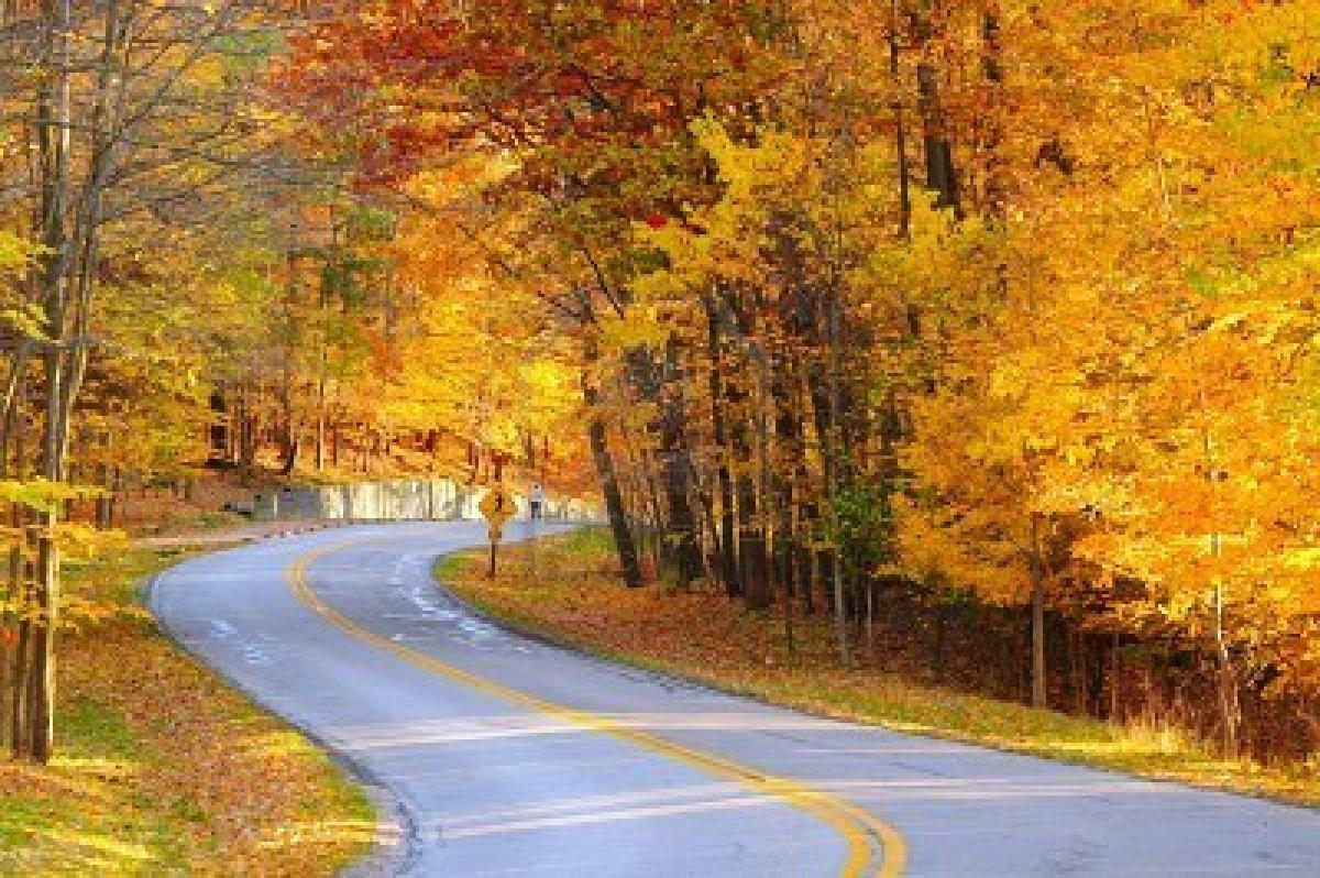 ⭐️ Cảnh Đẹp Mùa Xuân Trên Thế Giới ⭐️ 7267234-a-curving-autumn-road-with-a-hiker-in-the-far-distance