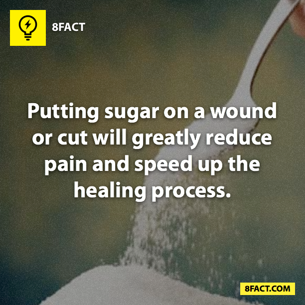 random facts , Putting sugar on a wound or cut will greatly reduce pain and speed up the healing process.