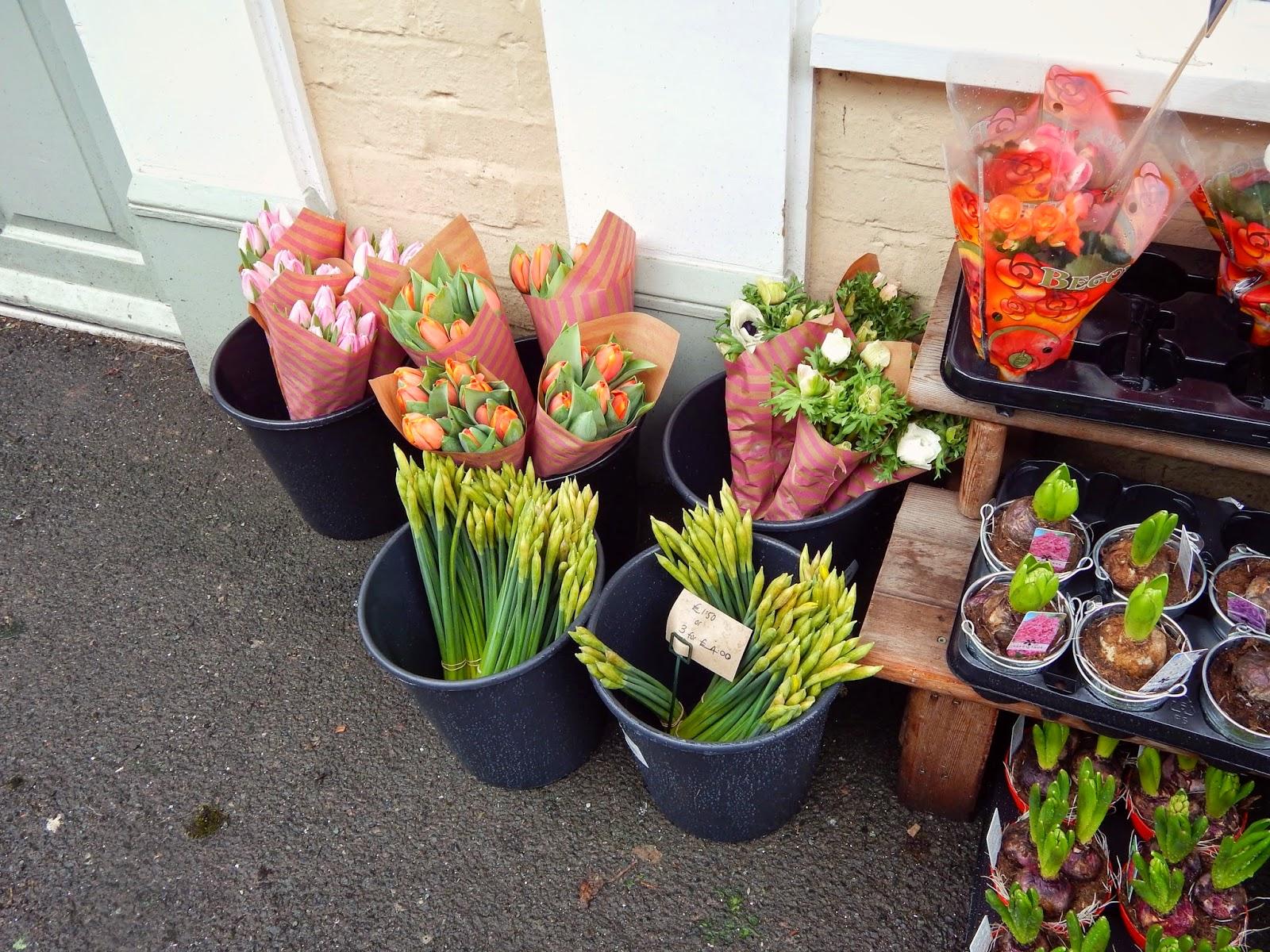 Much Wenlock Florist