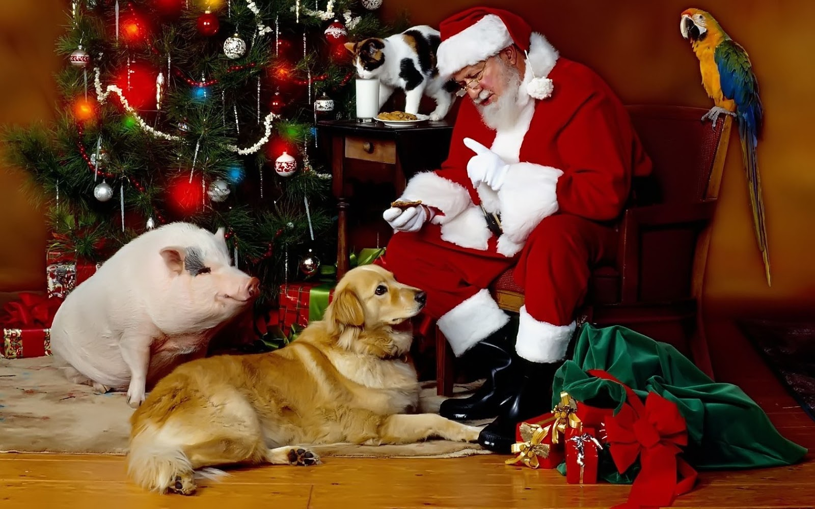 #SantaClaus #pig #dog #christmastree #Christmas #Christmasbackground.- Santa Claus, pig, dog, christmas tree