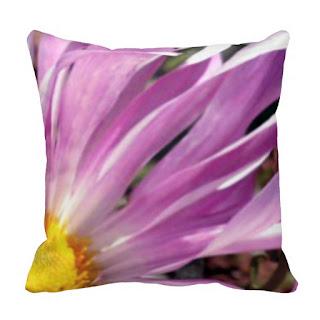 Spa home decor accent throw pillow