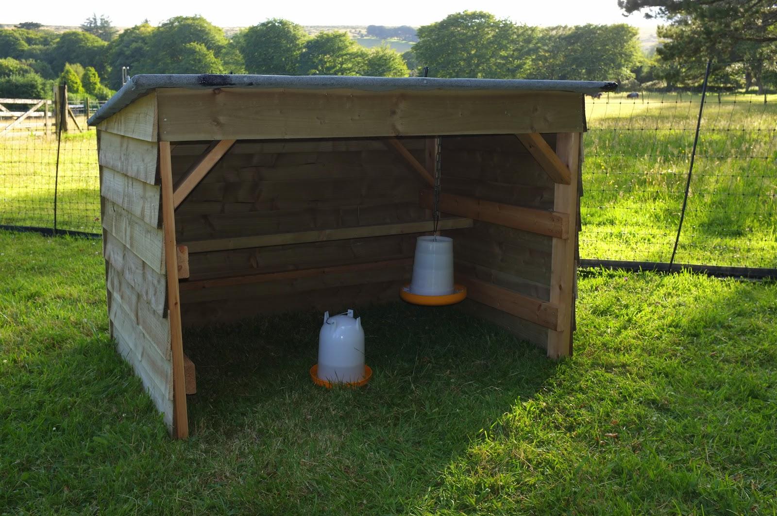gudgeon chicken shelter