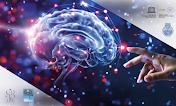 RoboEtica: sintesi dell'anno 2018/2019 del Gruppo di Neurobioetica