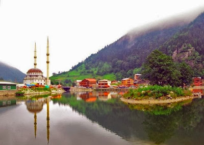 مرشد سياحي مع سيارة في الشمال التركي