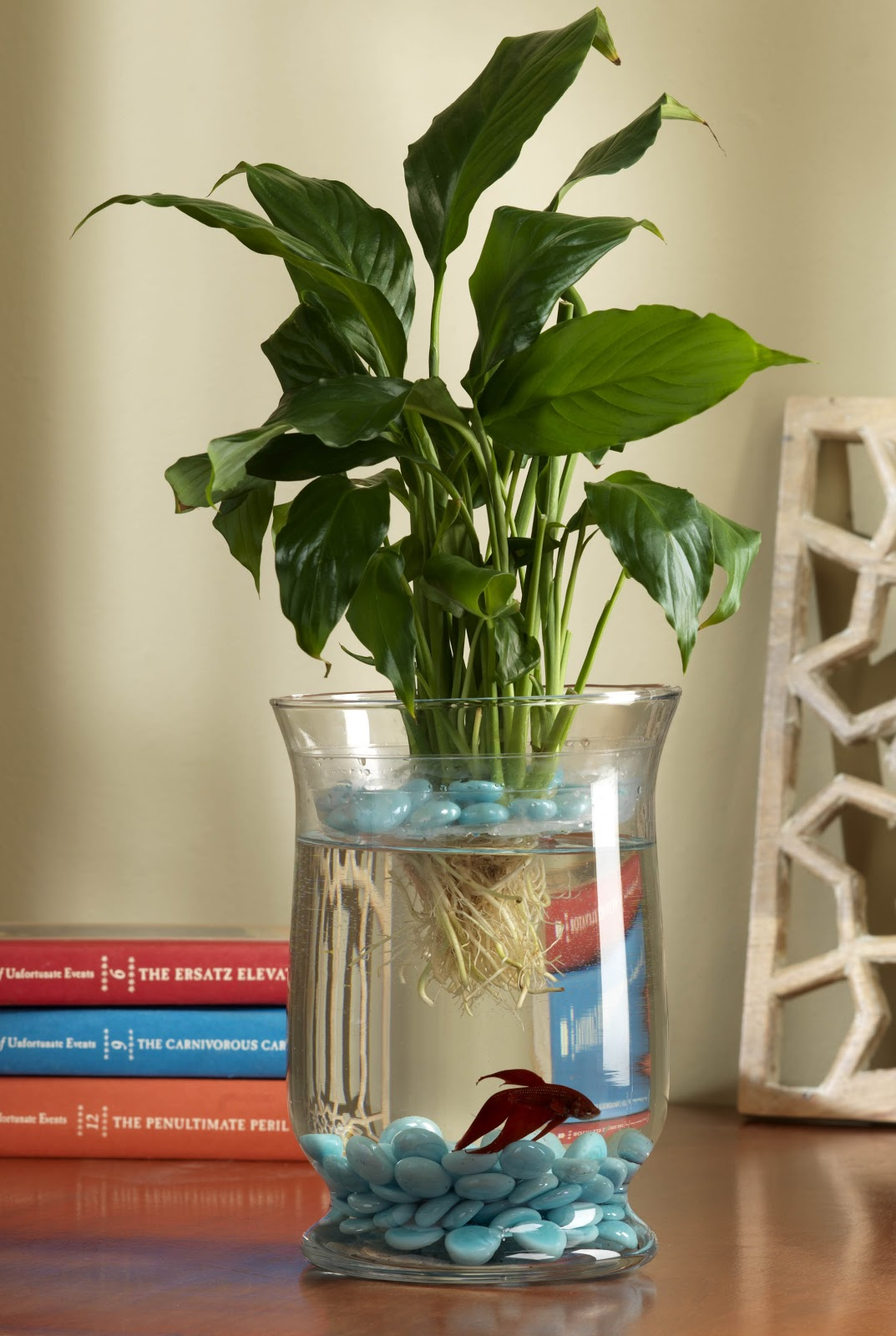 Craft warehouse blog for Betta fish and plants