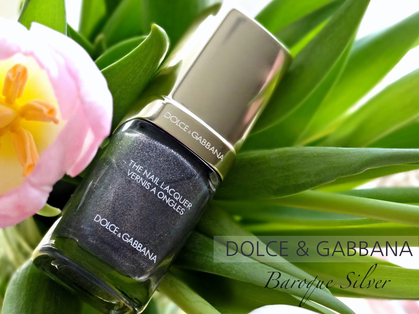 Dolce & Gabbana Nail Lacquer in 830 Baroque Silver