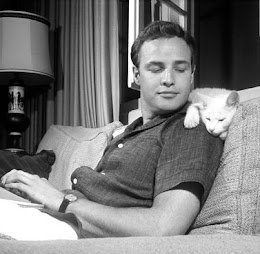 BRANDO