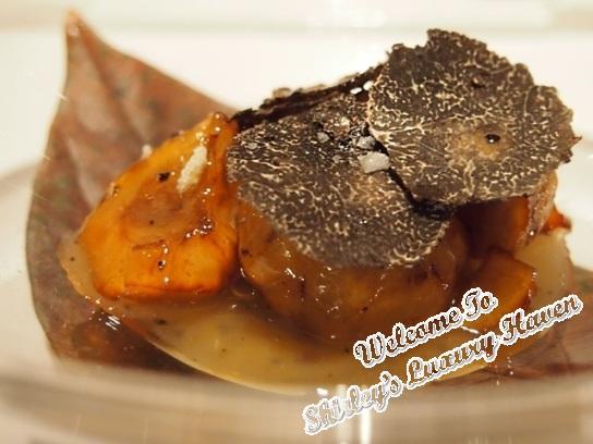 tokyo l'embellir mitonne au chatainge au truffe noir