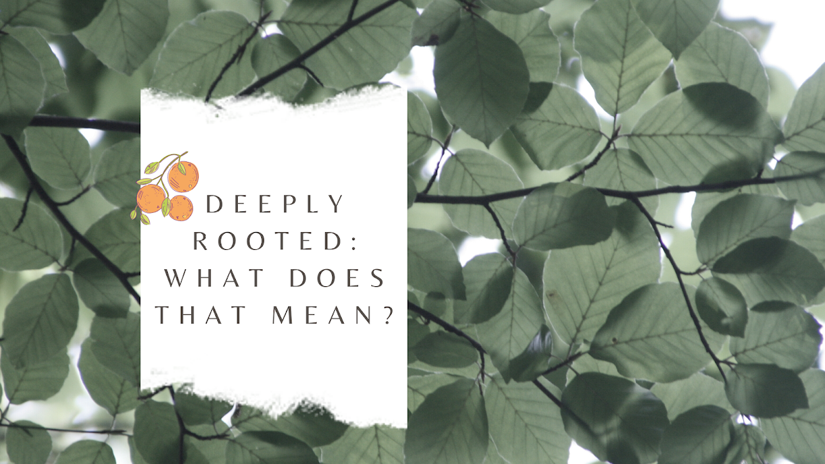 Deeply Rooted Us
