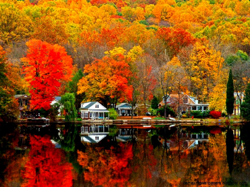1000 images about Fall Scenery on Pinterest  Autumn Autumn
