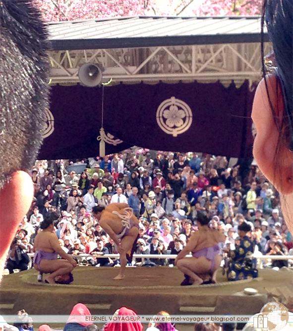Outdoor sumo in Tokyo