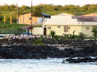 Galapagos Navy on San Cristobal, Galapagos