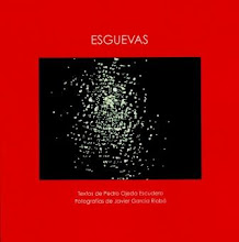 ESGUEVAS. Pedro Ojeda Escudero y Javier Garca Riob