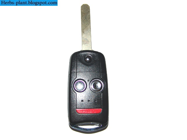 Acura mdx car 2013 key - صور مفاتيح سيارة اكورا ام دي اكس 2013