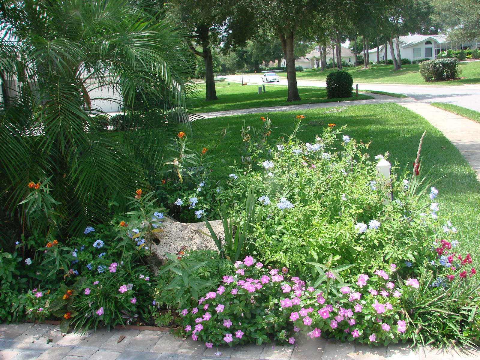 Earth shattering gardening creating a florida cottage garden for Backyard cottage plans