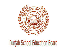 Jobs in punjab school education board 2013