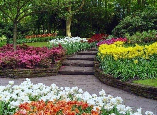 Bonitos jardines y paisajes for Jardines pequenos y bonitos