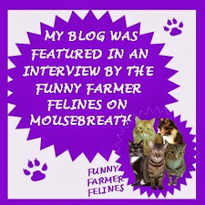 We were interviewed by the Funny Farmers for Mousebreath!