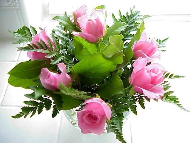 Message d 39 amour et d 39 amiti les roses et leurs nombres - Signification nombre de roses ...