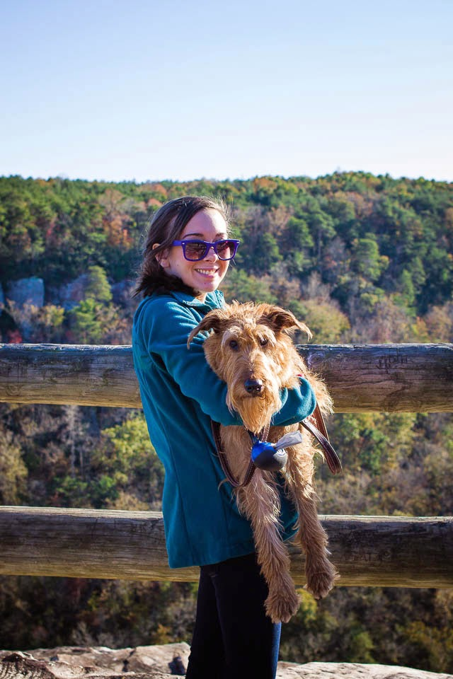 little river canyon scenic drive with irish terrier