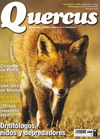 Revista Quercus, Onopordum illyricum, Cardo borriquero