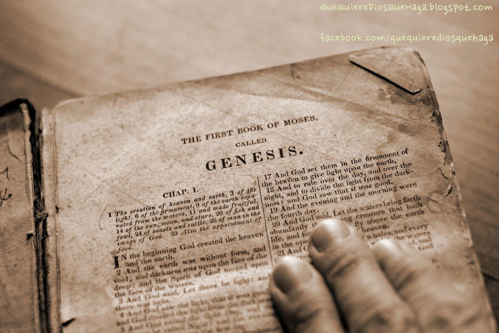 HISTORIA DE LA CREACIÓN DEL MUNDO - ADAN Y EVA EN VIDEO - Genesis - Paraiso