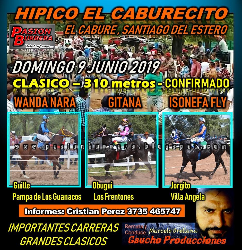 EL CABURE - 9 JUNIO - 310