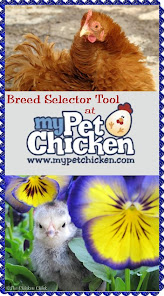 Which breed do you need?  Use the Breed Selector Tool to find out!