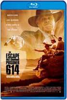 The Escape of Prisoner 614 (2018) HD 720p Subtitulados