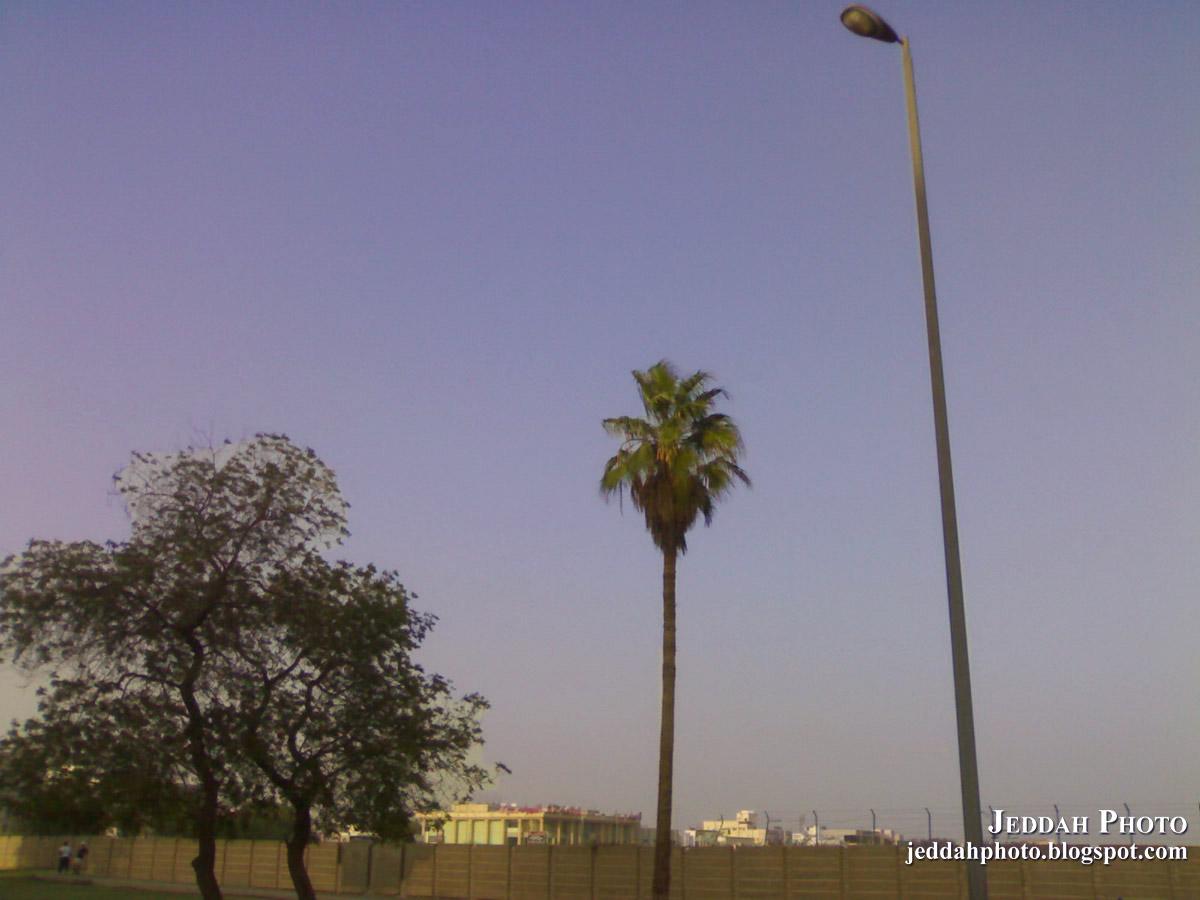 Jeddah dating