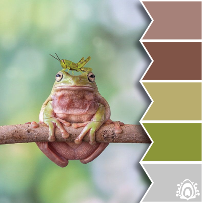 pastel feather studio, color palette, brown, grey, green, frog