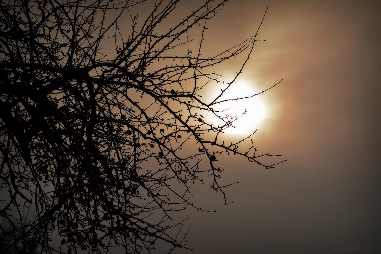 Und dahinter die Sonne