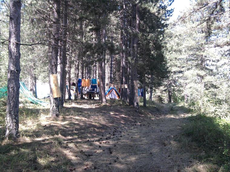 gruppo scout Palermo 4