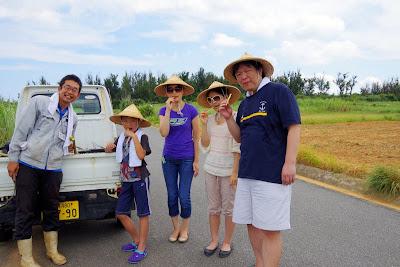 沖縄旅行 体験/観光 恩納村 サトウキビ刈り 収穫