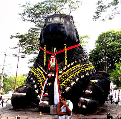 Nandi at Chamundeshwari Temple