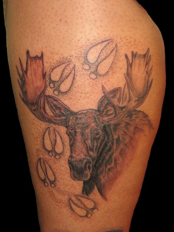 Wild Tattoos  Moose ta...