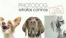 RETRATOS CANINOS
