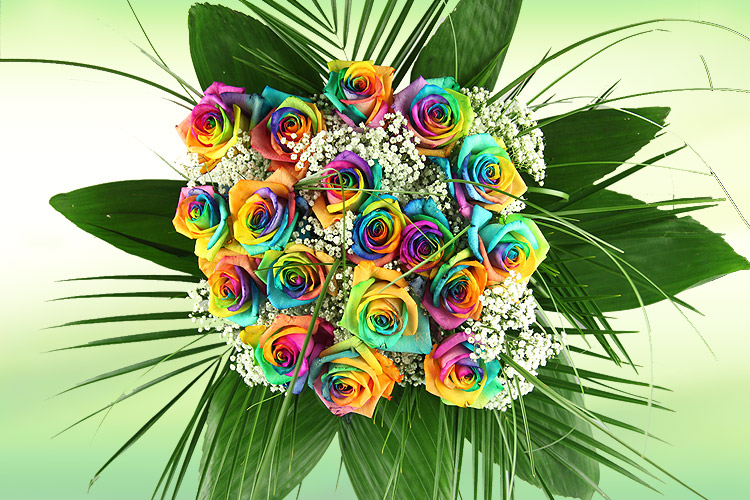 Flower pa news how to make rainbow roses for How to make a multicolored rose