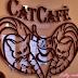 A hét kedvence: Cat Café