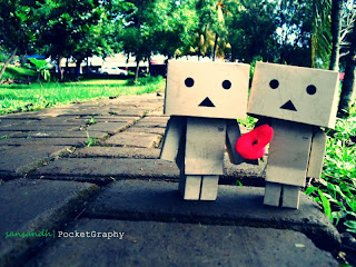 Free Download Wallpaper Danbo Terbaru 