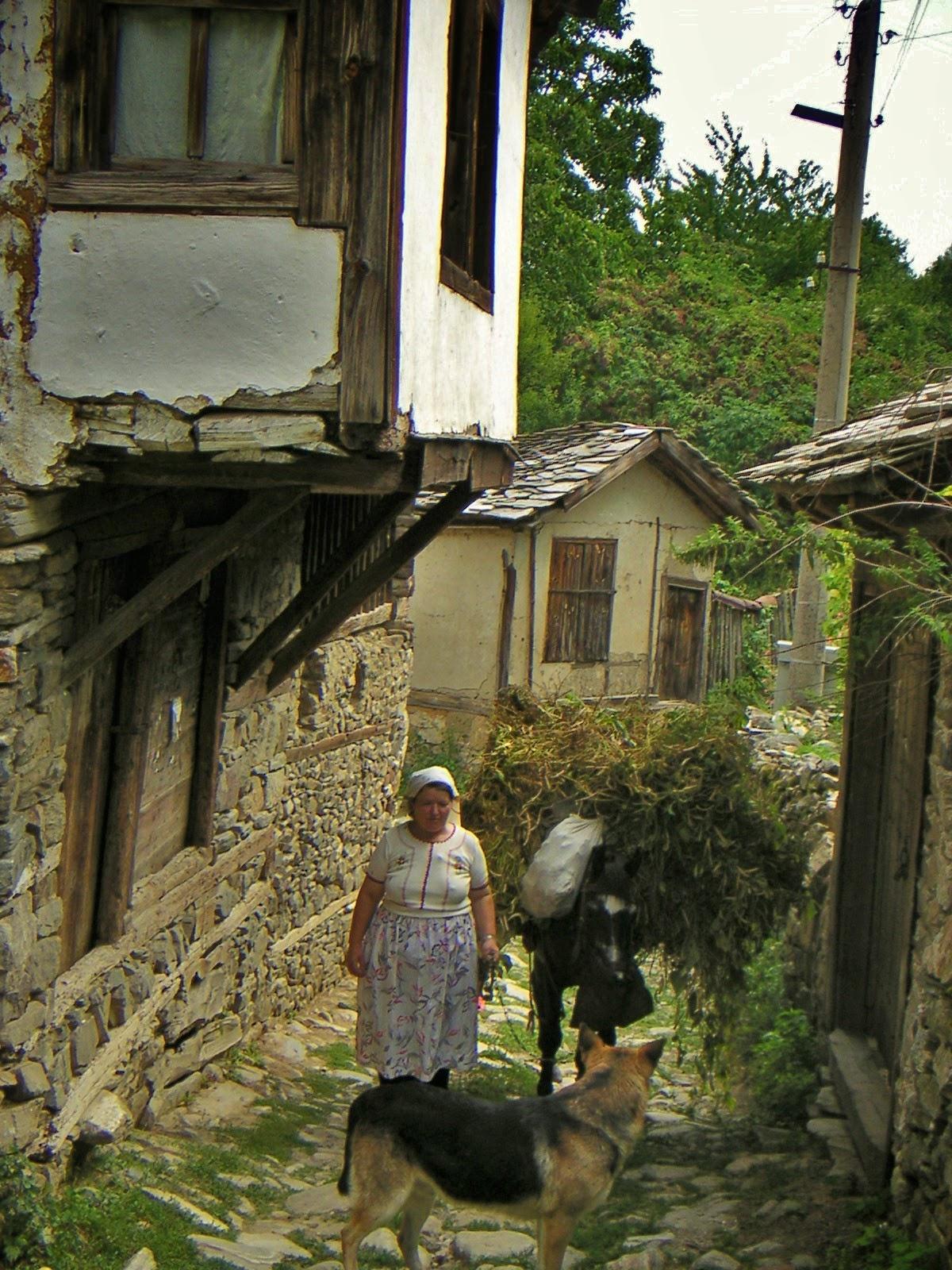 село Долен улица
