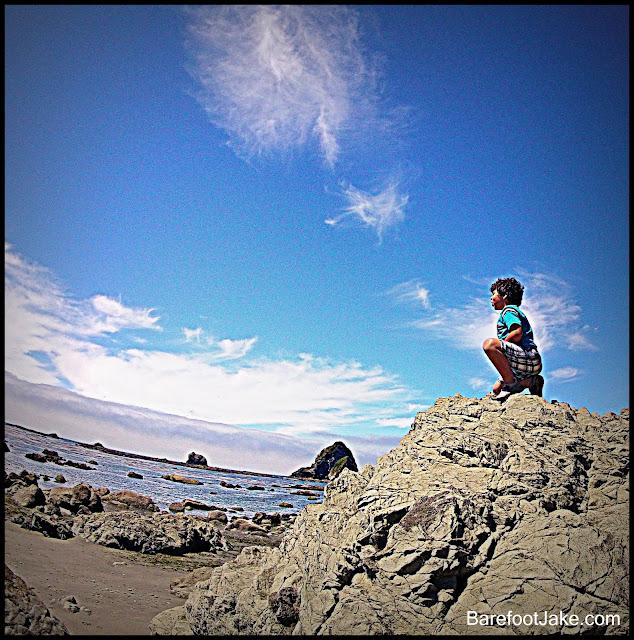 kid exploring olympic coast