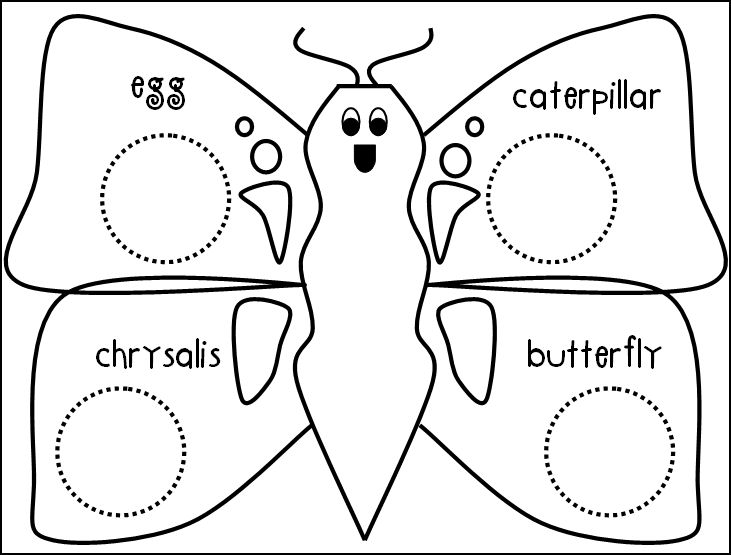 butterfly life cycle for preschool the of teaching a kindergarten butterflies 818