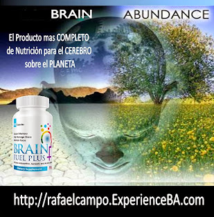 BRAIN ABUNDANCE - Brain Fuel Plus