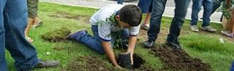 """Recuperação de canteiros, plantio de mudas e """"agricultura urbana"""" deverão tornar Currais Novos uma cidade """"mais verde"""""""