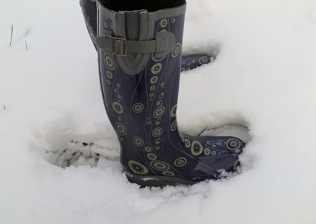 Barratts Swirl Print Wellington Boots