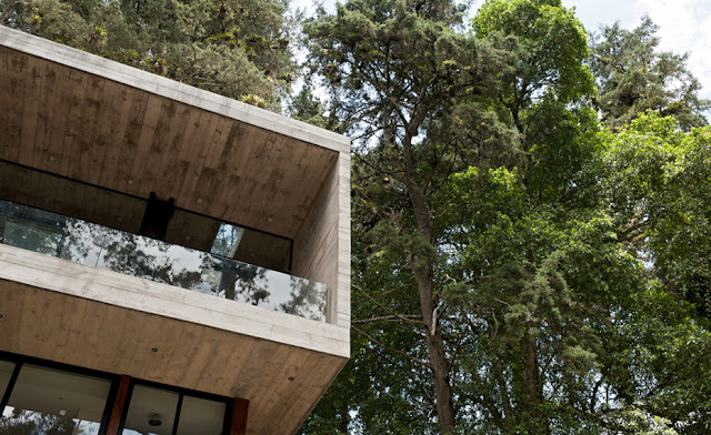Picture of the concrete facade of the house and green trees above it