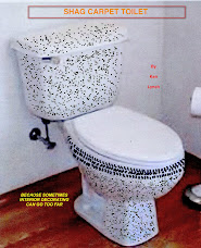 Shag Carpet Toilet